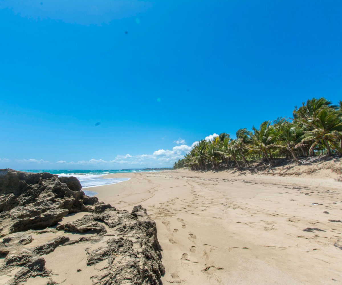 Beach Front Lot In Cabarete