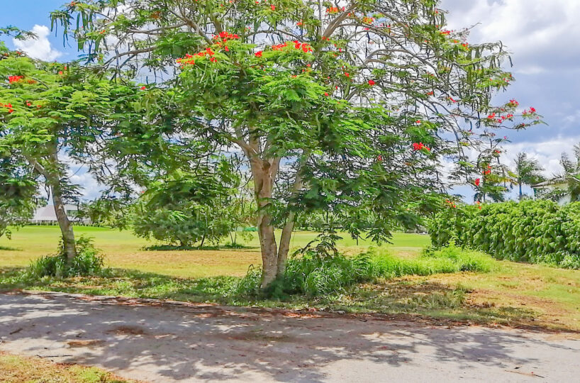 Land for Sale in Casa de Campo La Romana