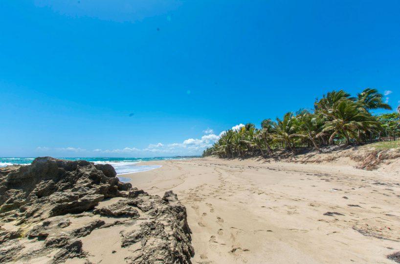 Beach Front Lot In Cabarete